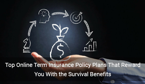 Online Term Insurance Plans that Reward You With Survival Benefits