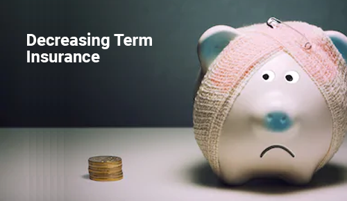 Decreasing Term Insurance Plan in India