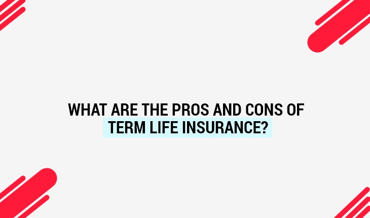 What are the Pros and Cons of Term Life Insurance plan?