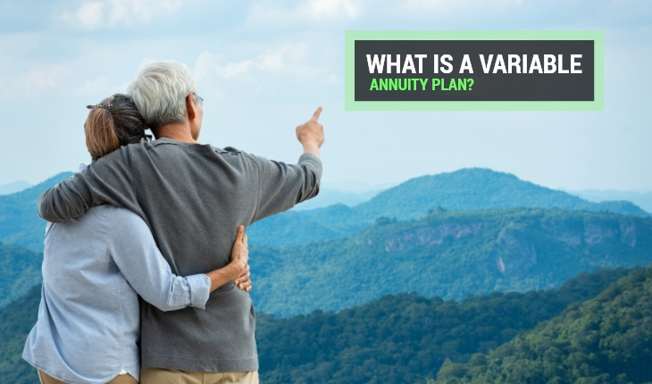 What is a Variable Annuity Plan?